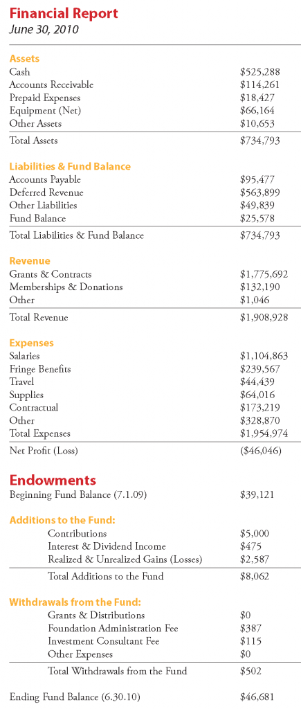 2010AnnualReport-financials