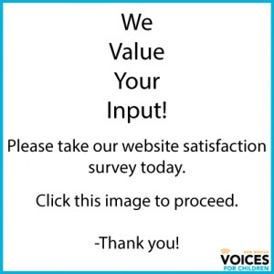 Website-Satisfaction
