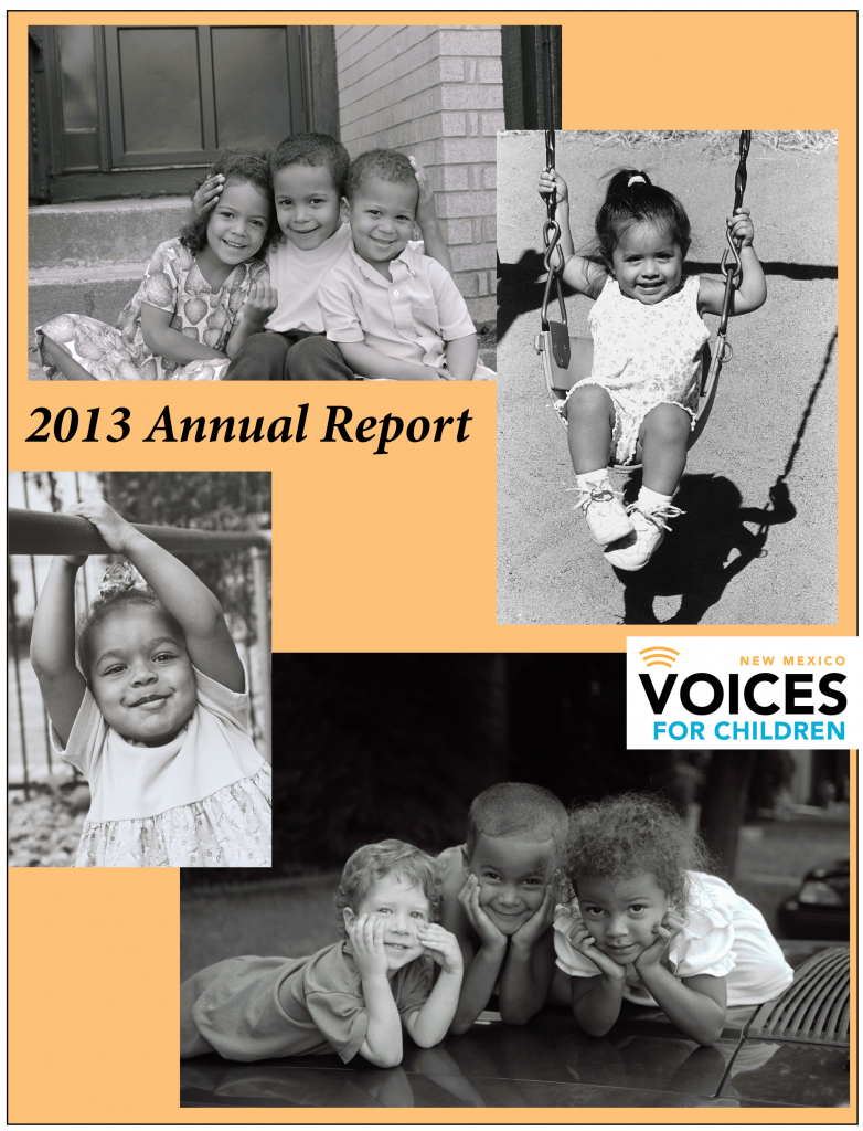 2013 annual report-cover