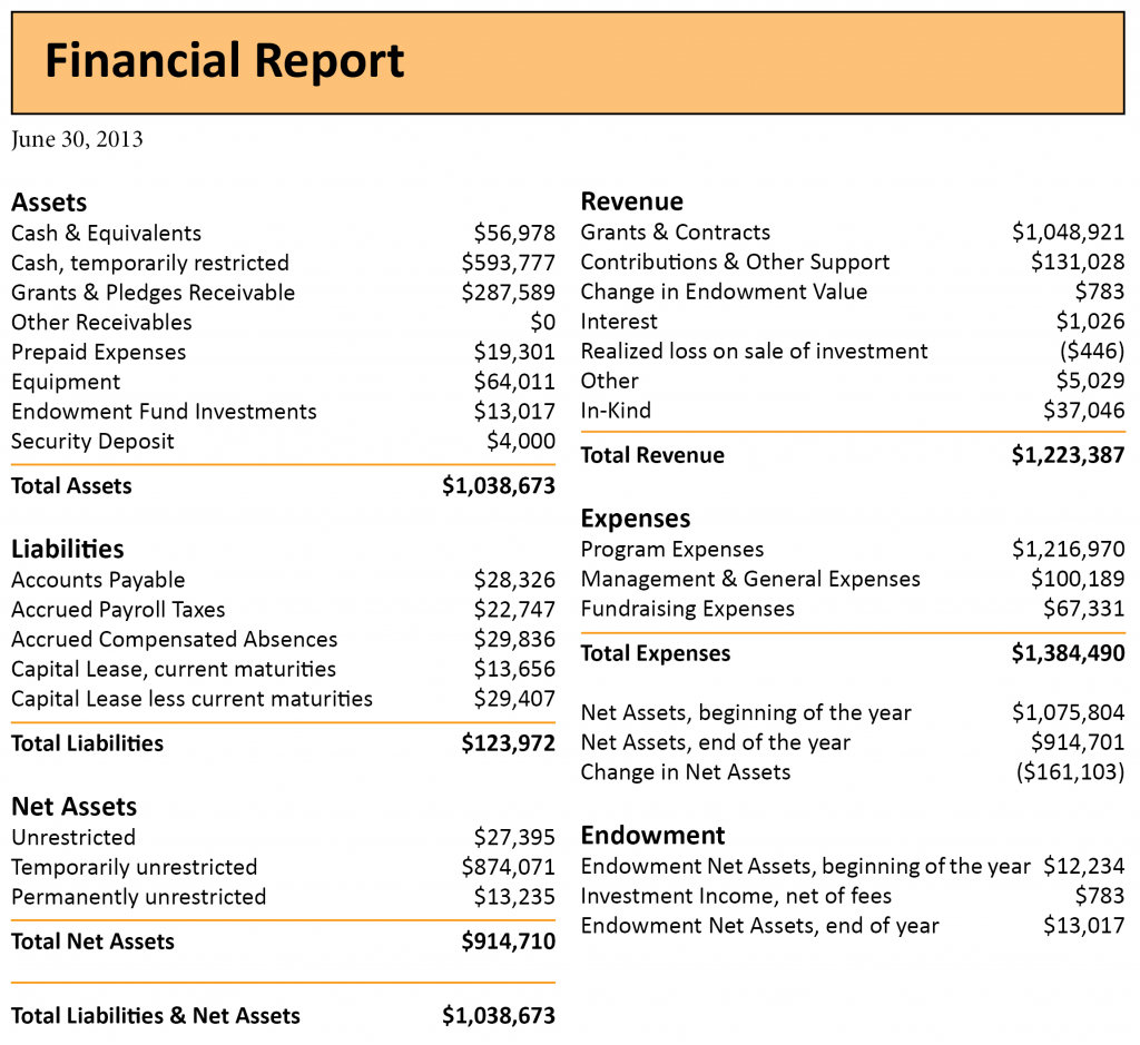 2013 annual report-financials